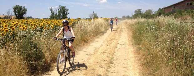via francigena bici