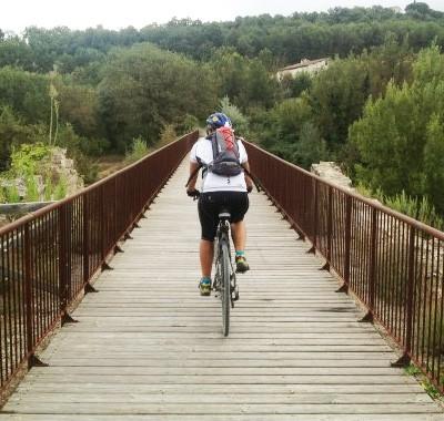 francigena bici da corsa
