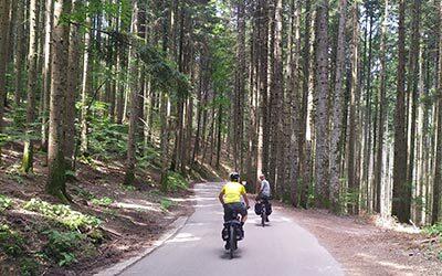 foreste casentinesi tour
